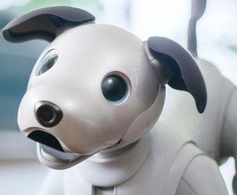 Sony Aibo: AI Infused Robotic Dog Back to Life